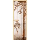 Дверь из стекла для саун и бань АКМА 700*1900 рисунок Лес V1 монохром