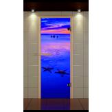 Стеклянная дверь для бани и сауны Aldo Премиум 690*1890  фотопечать, стекло сатин, коробка термобук