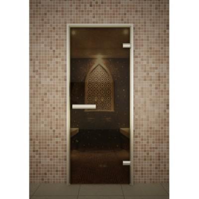 Стеклянная дверь для турецкой бани хамама Aldo серия Лайт стекло бронза 690*1890