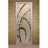 Стеклянная дверь для турецкой бани Aldo ДТ Арабика 690х1890